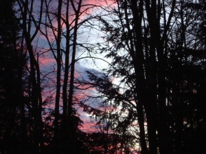 Sunset in Redmond