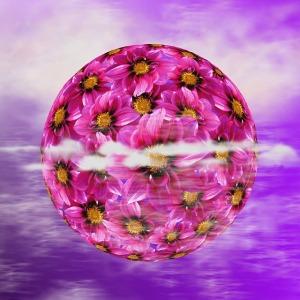 Dahlia flower globe
