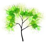Tree of Life C
