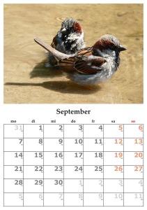 calendar-440586_1280